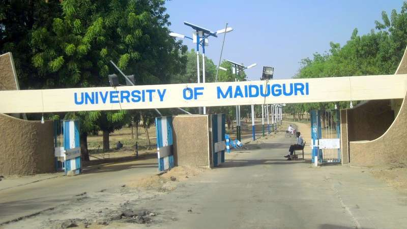 unimaid postgraduate admission list