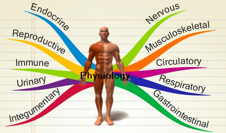 jamb subject combination for physiology