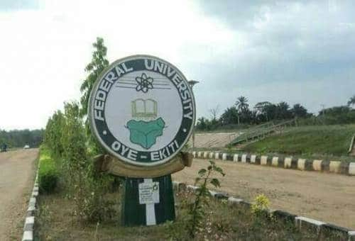FUOYE Prospective Students who chose Law