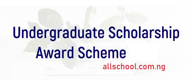 nile university scholarship